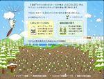 kaiware20070215-235940.jpg