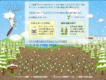 kaiware20070221-235940.jpg
